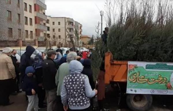 خبرنگاران شهرداری پردیس 6 هزار اصله نهال به شهروندان اهدا کرد