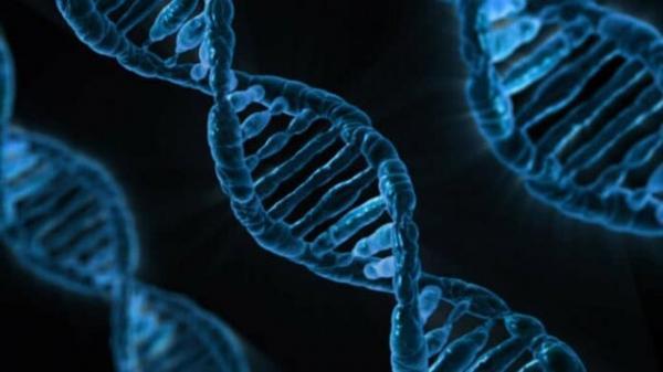 تراشه ای که می تواند تست های ژنتیکی را ساده تر کند