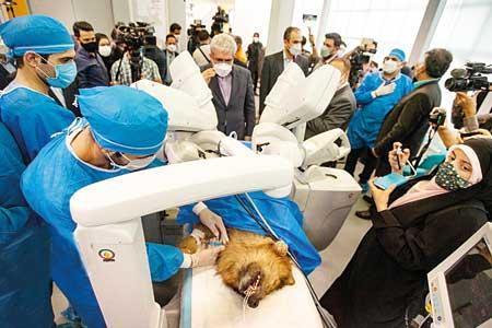ربات جراح سینا برای کارآزمایی بالینی آماده می گردد